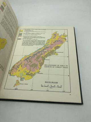 New Zealand Forestry