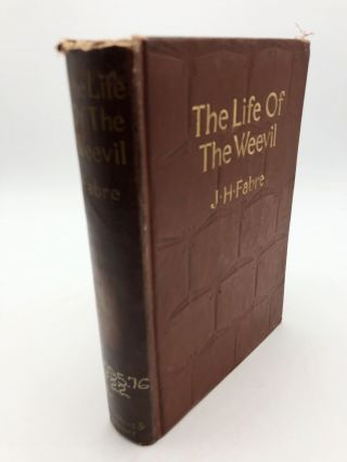 The Life of the Weevil -- Translated By Alexander Teixeira De Mattos. J H. Fabre