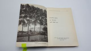 Poplars in Forestry and Land Use
