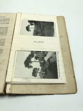 Contributions from the United States National Herbarium Volume 27. Flora of the Panama Canal Zone
