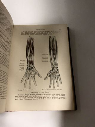 Applied Anatomy: The Construction of the Human Body Considered in Relation to its Functions, Diseases and Injuries, Fifth Edition